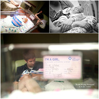 Collages of all Hospital Baby Sessions